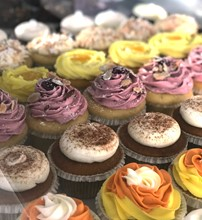 Assorted Cupcakes - 6 Pack HDCC